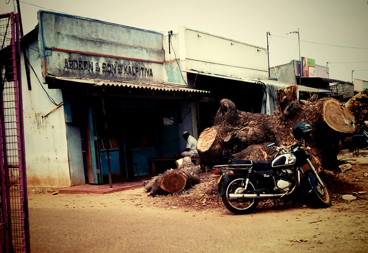 srilanka-2013_06_08_033vignette