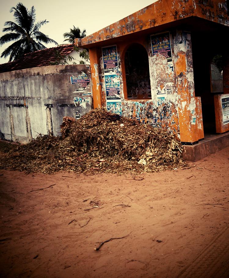 srilanka-2013_06_08_035vignette